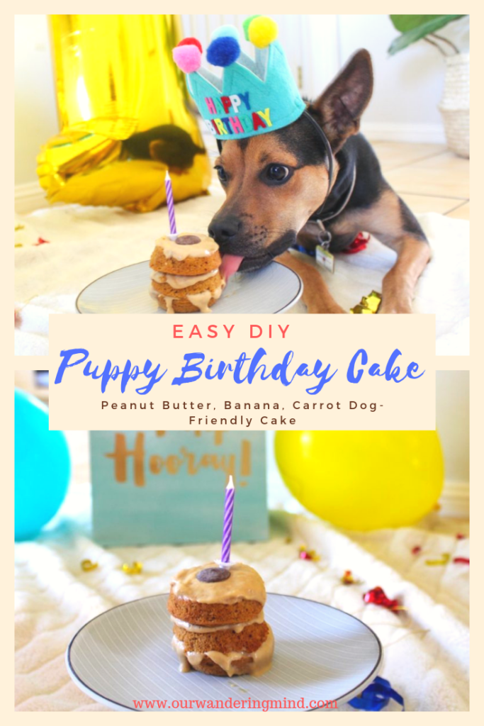 Easy Diy Puppy Birthday Cake Peanut Butter Carrot Apple Cake